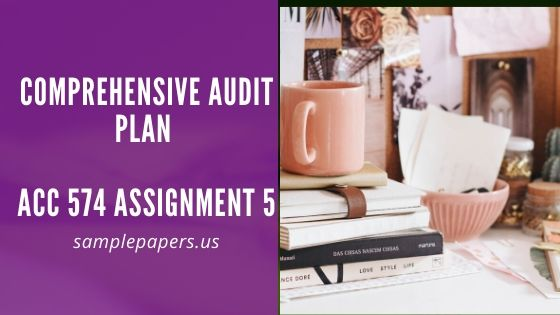 Comprehensive Audit Plan : ACC 574 Assignment 5