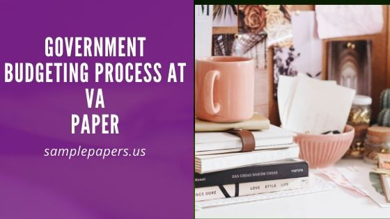 Government Budgeting Process at VA paper