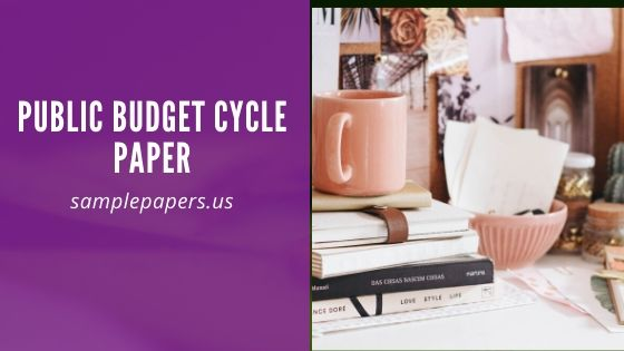 Public Budget Cycle Paper